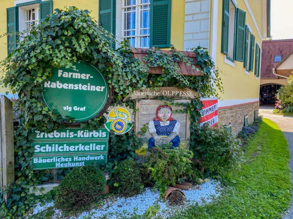 Farmer Rabensteiner Hof Kürbiskerneöl